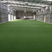 Fake grass for cricket